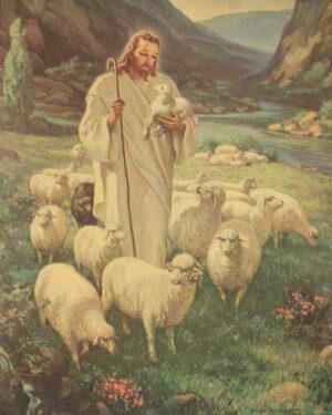 Non ritirarsi dall'impegno verso il gregge di Cristo