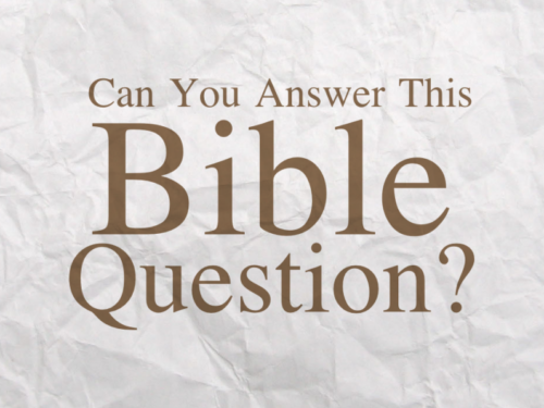 A Question on 2 Timothy 1:7