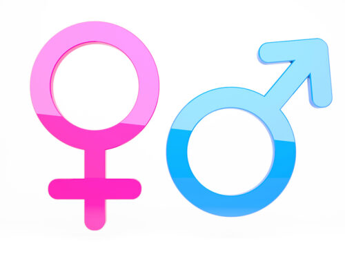 What science really has to say about sexuality and gender, Joe Carter