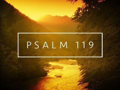 Gioisco della tua parola, come chi trova un grande bottino (Salmo 119:162)