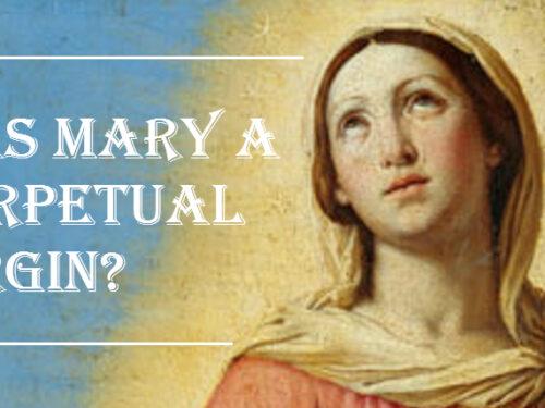 Maria e Matteo 1:25, Concepimento verginale o verginità perpetua?