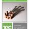 Prenotatevi! Primo Convegno TGCi, Custodire il buon deposito del Vangelo