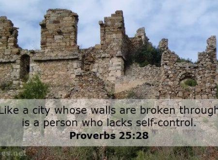 L'autocontrollo, Proverbi 25:28 e Galati 5:22-23