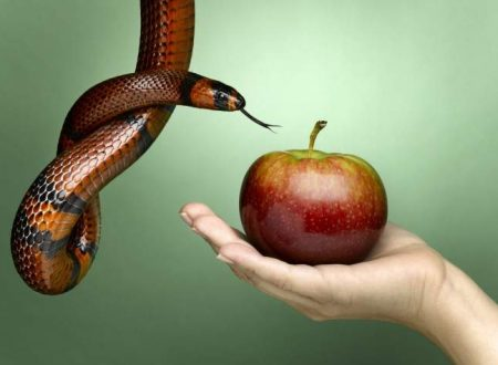 La tentazione o la prova di Gesù? Dipende dal punto di vista